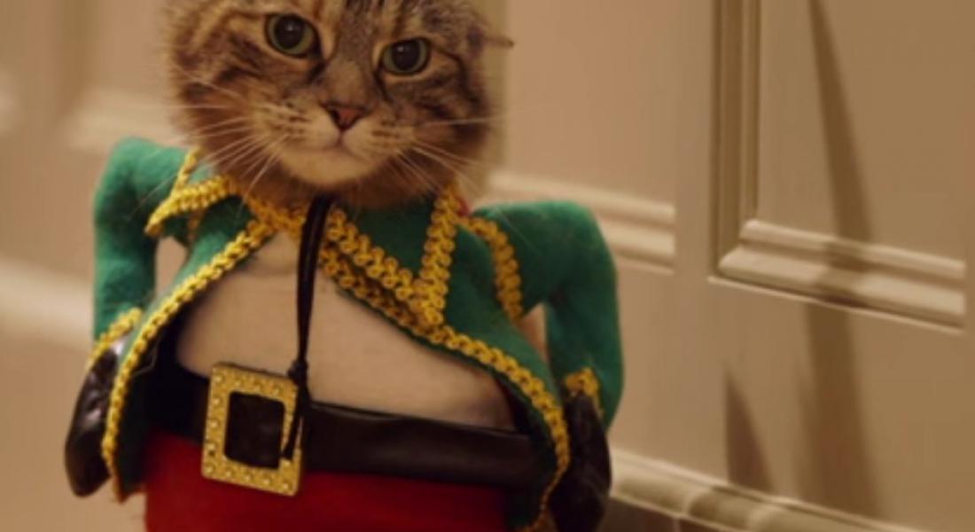 Cat content für Temptations Katzenfutter